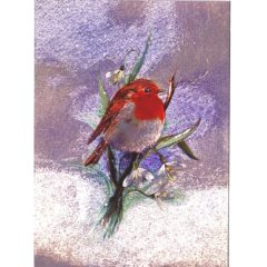3554 Robin on Branch