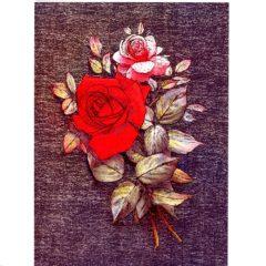 3598 Red & Pink Rose