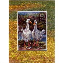 3702 Two Ducks