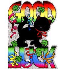 4042 Good Luck – black cat
