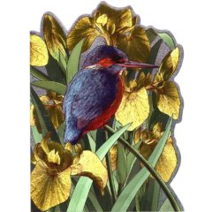 4142 Kingfisher w. Yellow Irisses
