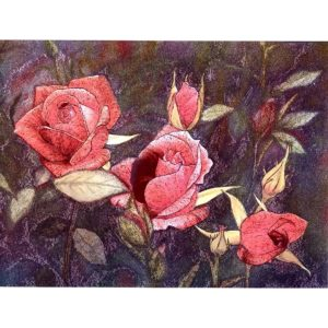 6639 Pink Roses