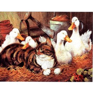 6641 Cat Together with Goose
