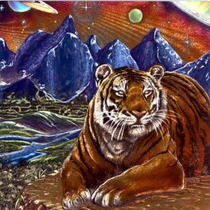 7085 Tiger & Mountains – by L Gibbins