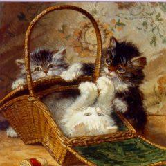 ESL12 Kitten in a Basket – cats