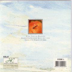 ESL27 Still Life of Peaches