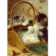 FA05 Kitten in a Work Basket – cats