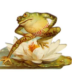 GE06 Froggie Fun