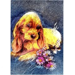 P1368 Puppy/Flowers/Butterfly