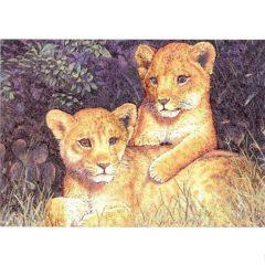 P1388 Lion Cups