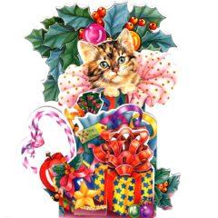 C-3D752 Kitten & Presents