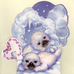 C-3D856 Seal Pups