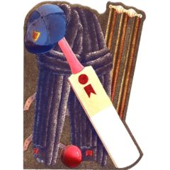 4100 Cricket