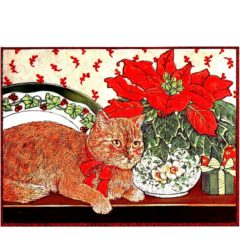 0722 Cat and Poinsetta
