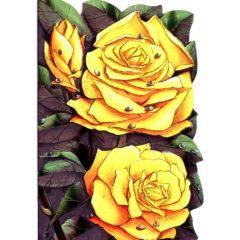 4122 Yellow Roses