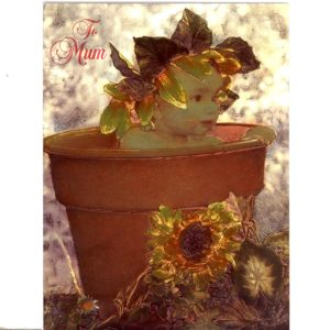 6609 Clay Pot Baby – Sunflower